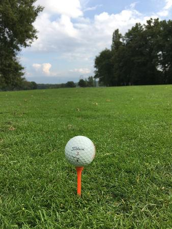 Profile cover of golfer named Edgar Raisin