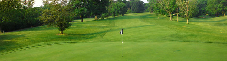 Avon fields golf course cover picture