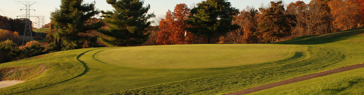 Carroll meadows golf course cover picture