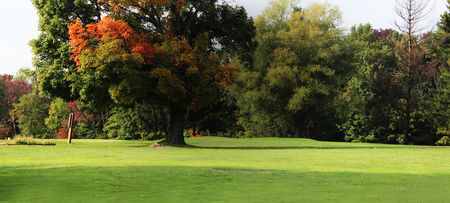 The Woods at Possum Run Golf Course Cover Picture