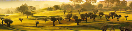 Windwood hollow golf course cover picture