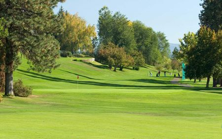 Downriver golf course cover picture