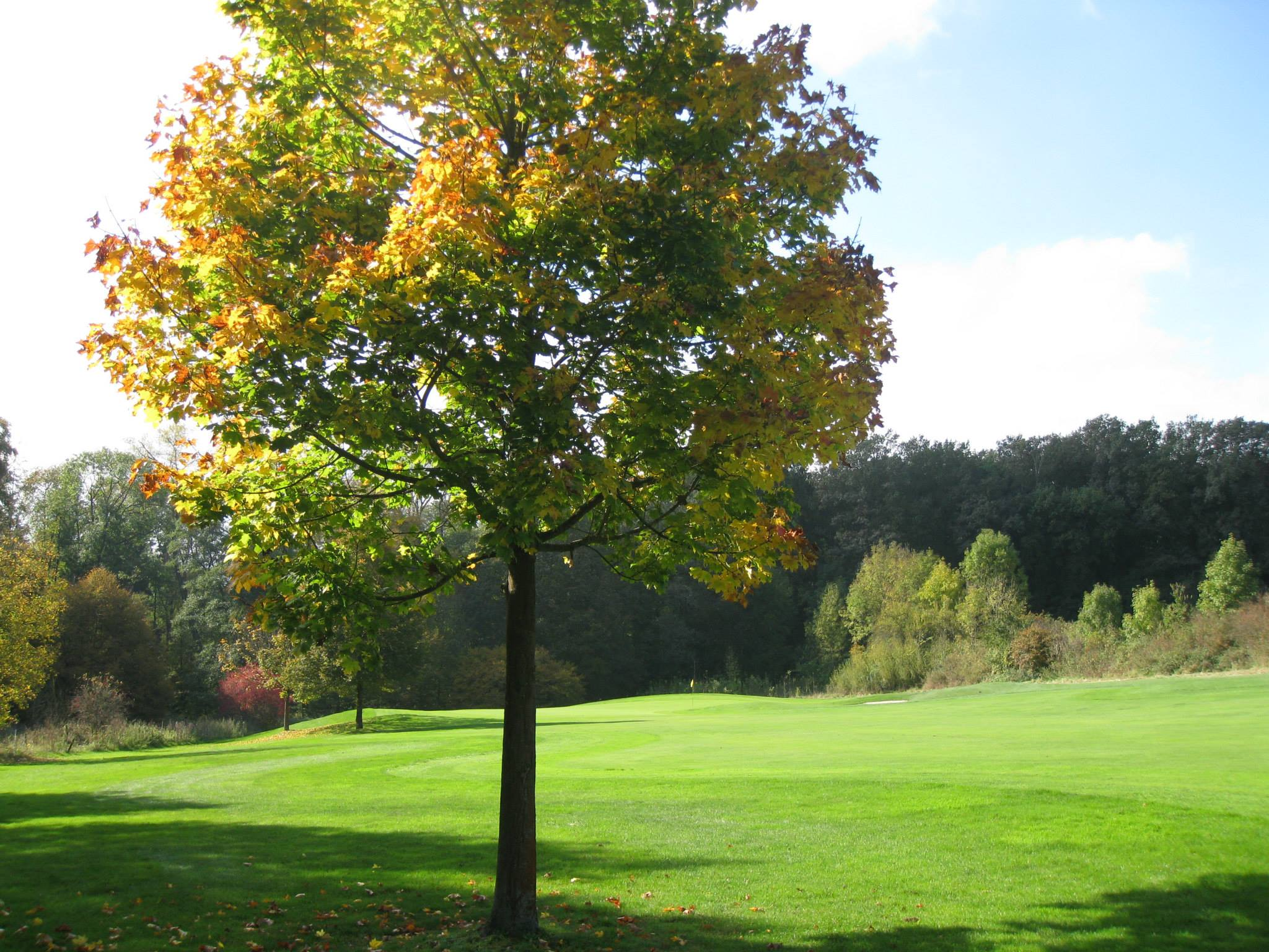Overview of golf course named Licher Golf-Club Furstliches Hofgut Kolnhausen e.V.