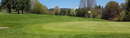 Overview of golf course named Golfclub Rickenbach e.V.