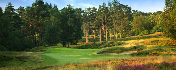 Sunningdale golf club old course cover picture