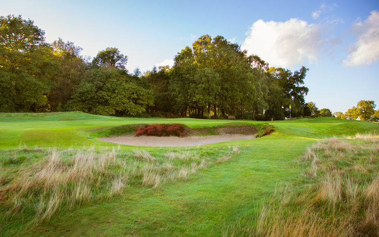 Walton heath golf club old course cover picture