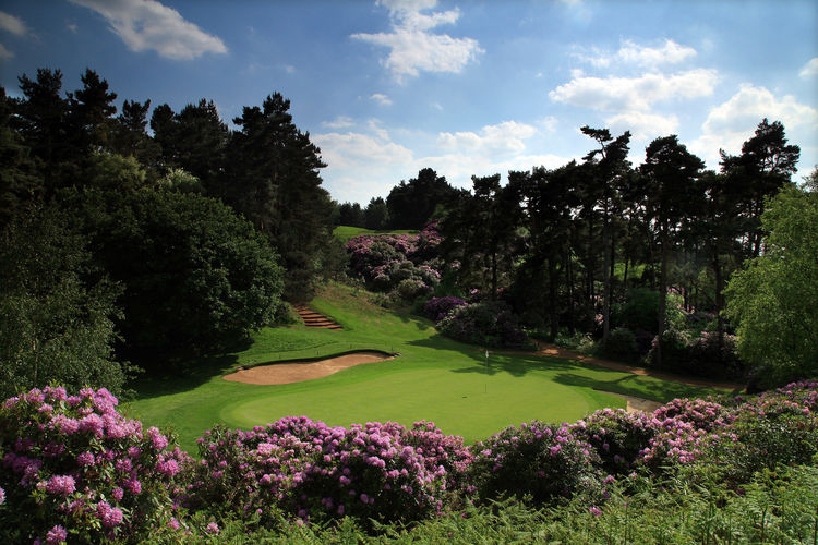 Woburn golf club the duke s course cover picture