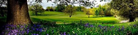 Moyola Park Golf Club Cover Picture