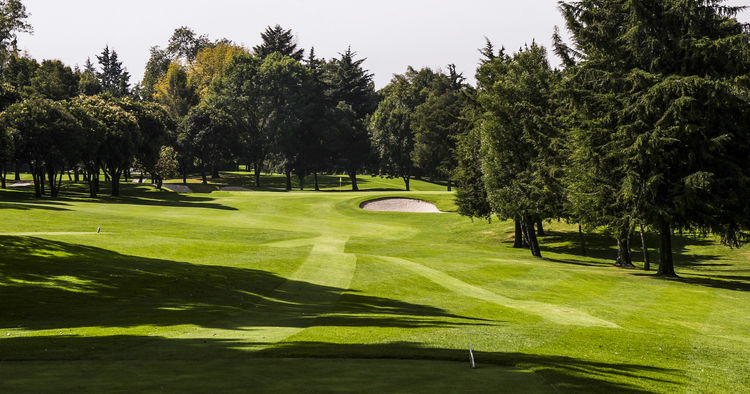 Chapultepec golf club cover picture