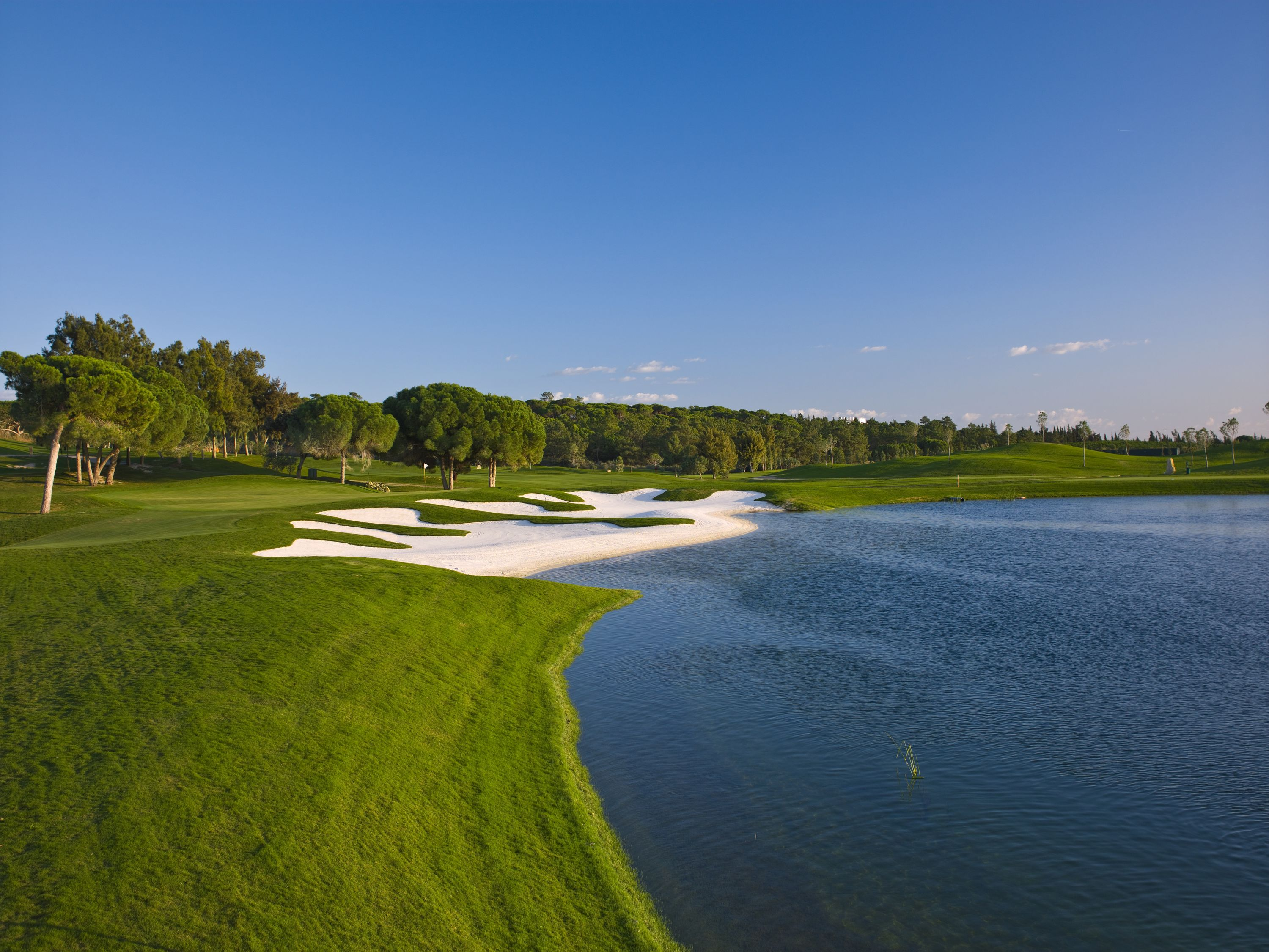 Quinta do lago laranjal cover picture