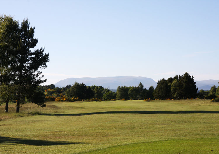 Muir of ord golf club cover picture