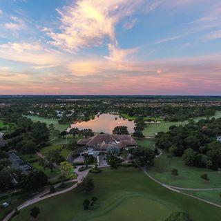 Bent pine golf club picture