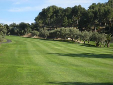 Overview of golf course named Club de Golf Don Cayo