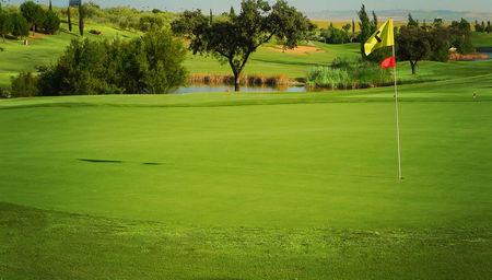 Overview of golf course named Club de Golf Hato Verde