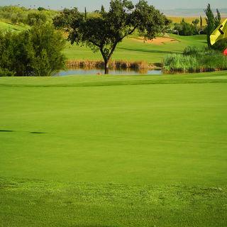 Club de golf hato verde cover picture