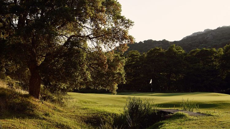 pga national golf course cover picture