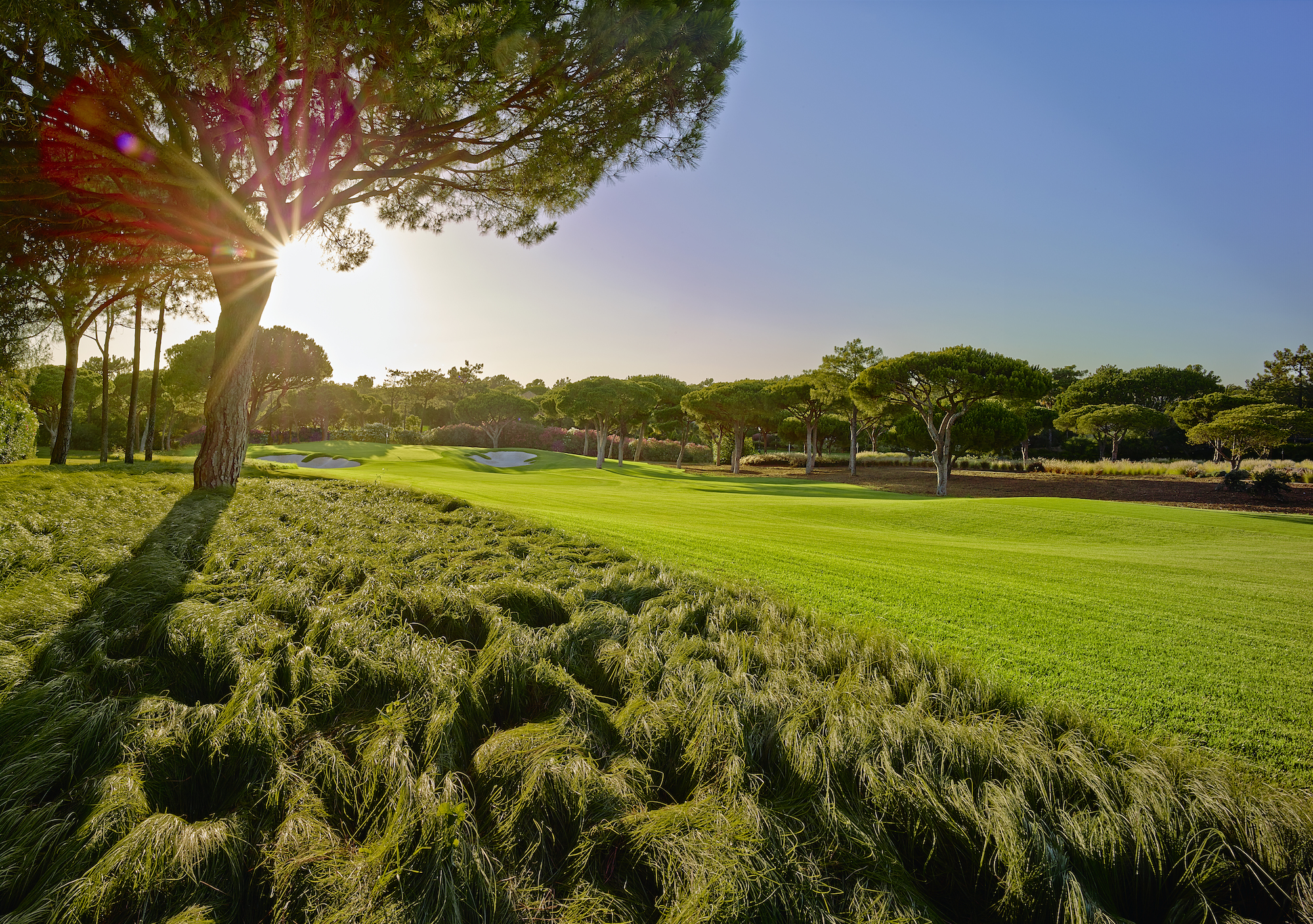 Hosting golf course for the event: Golden Tournament - Quinto do Lago