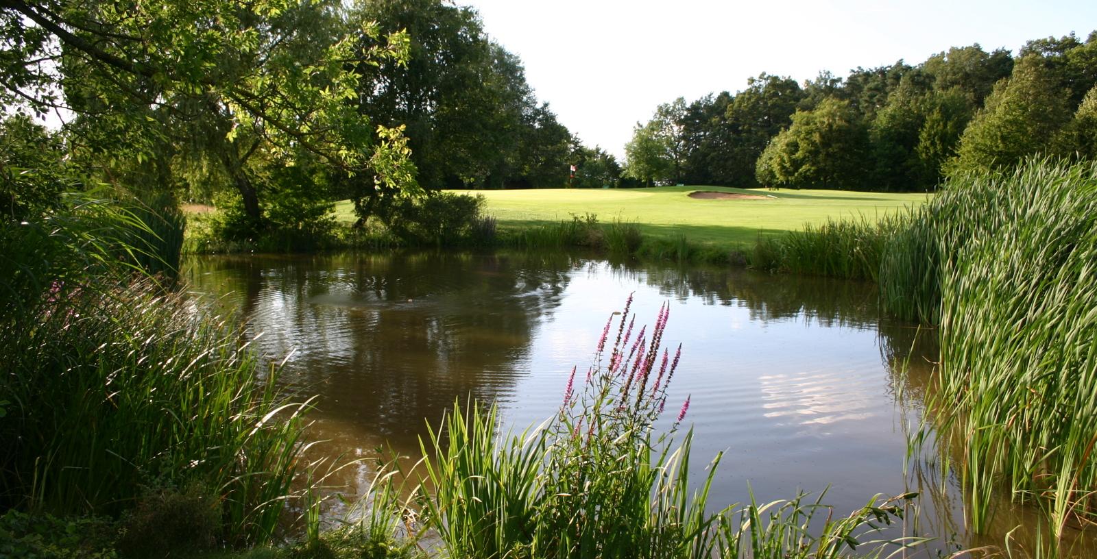 Overview of golf course named Golfanlage Puschendorf