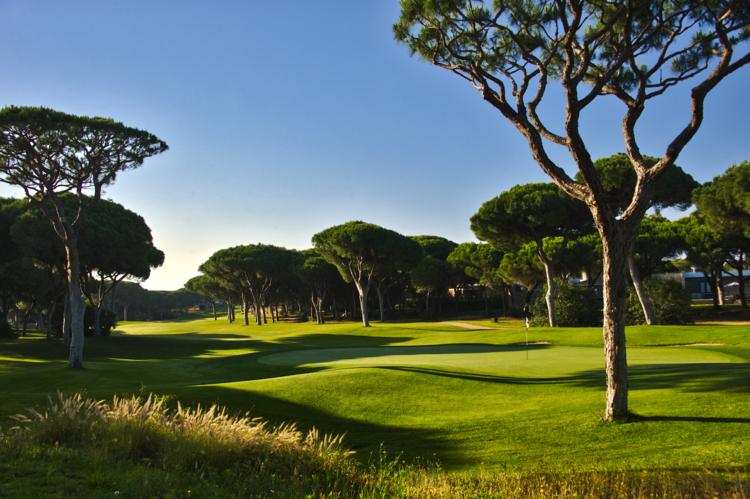 Dom pedro millennium golf course cover picture