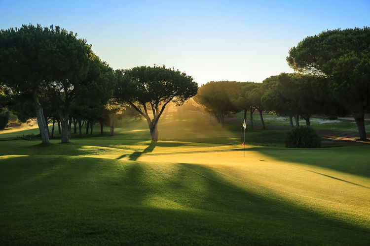Dom pedro pinhal golf course cover picture