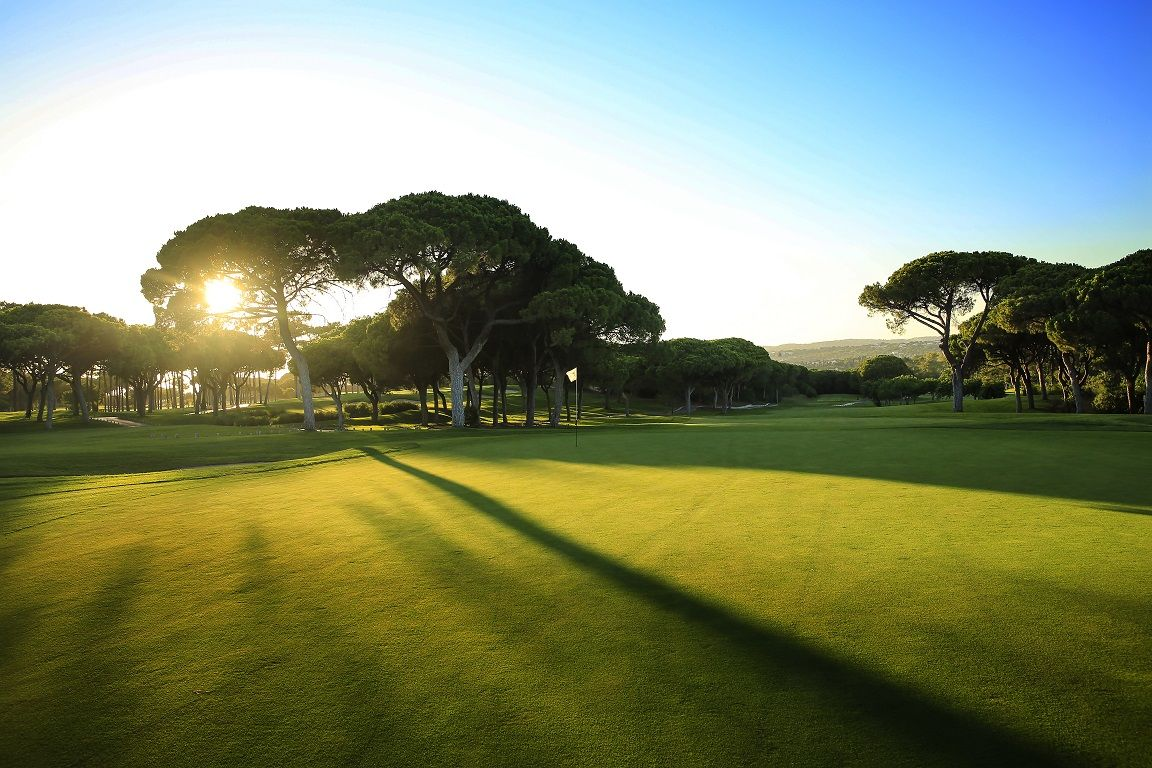 Dom pedro the old course golf club cover picture