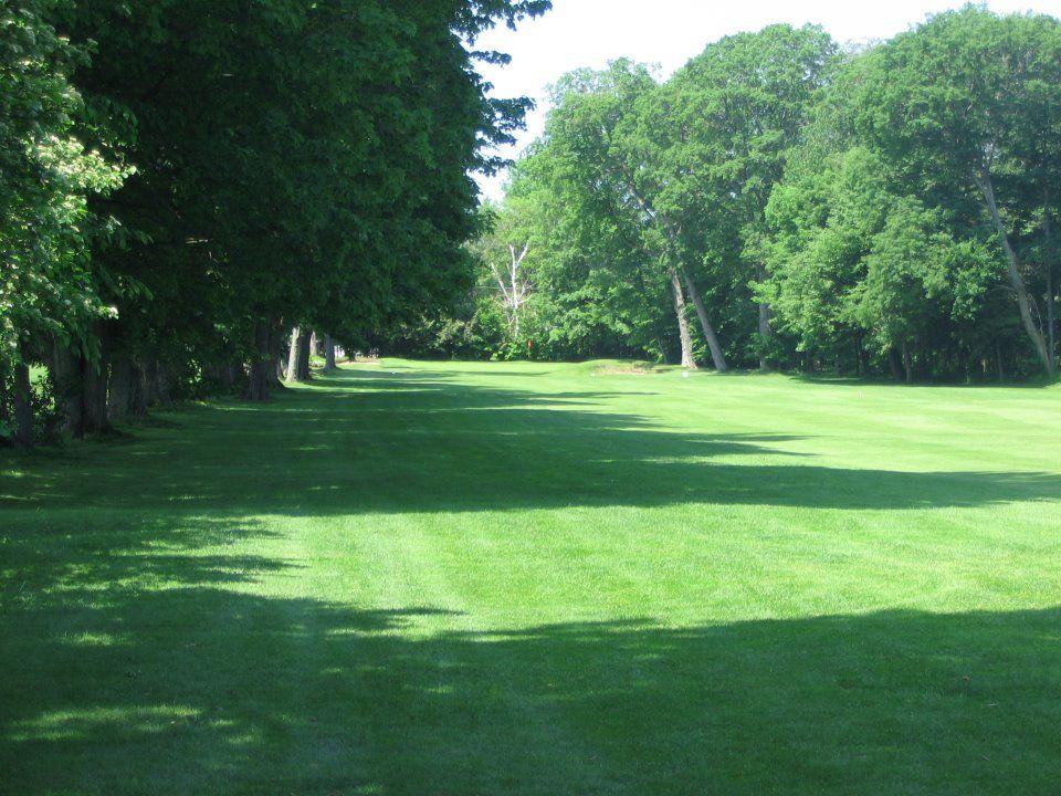Allandale golf course cover picture