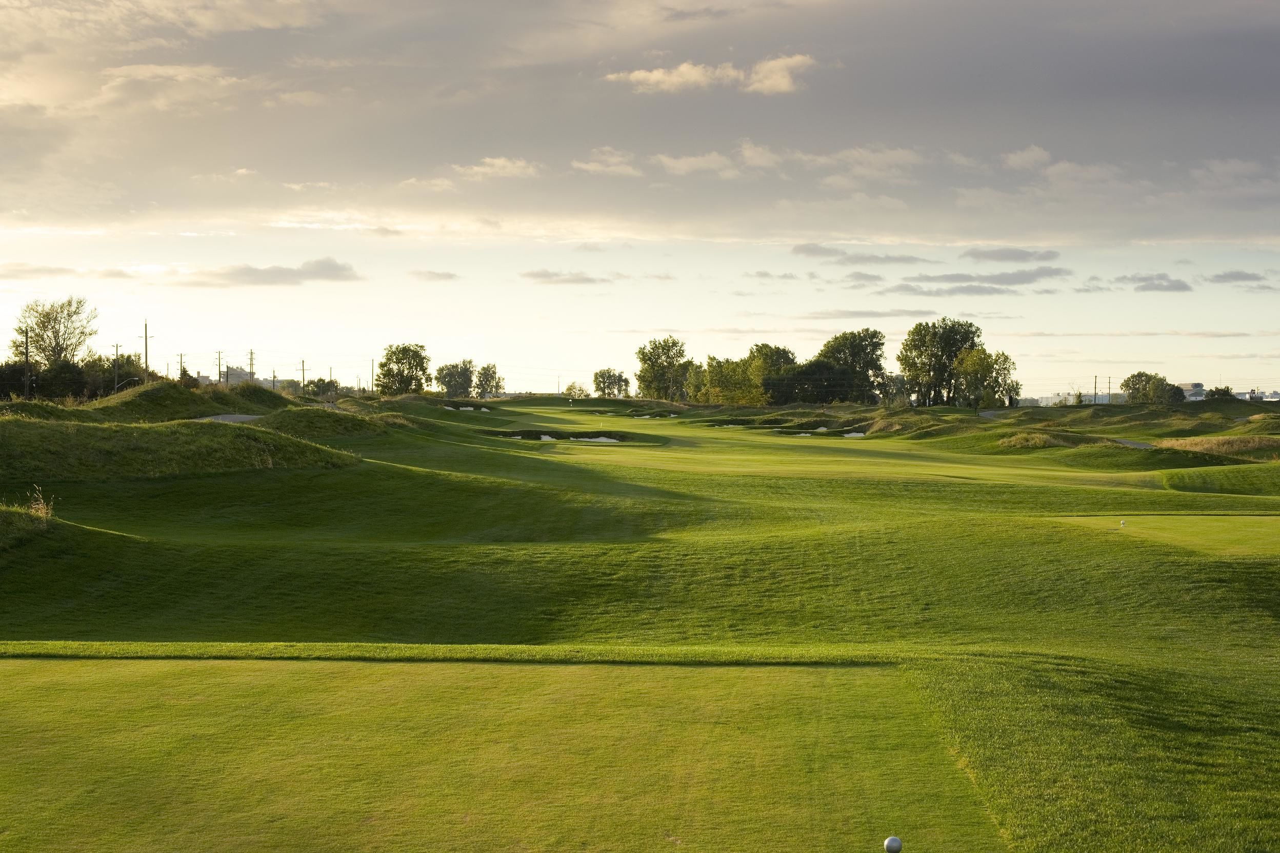 Ambassador golf club cover picture