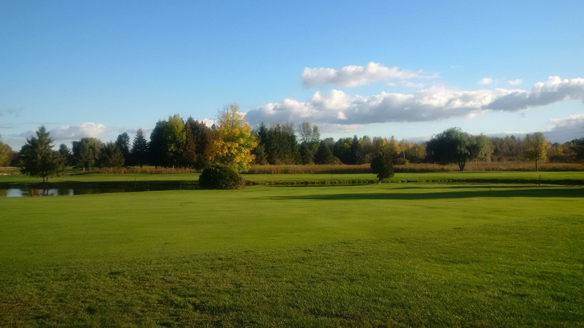 Amberwood village golf and country club cover picture
