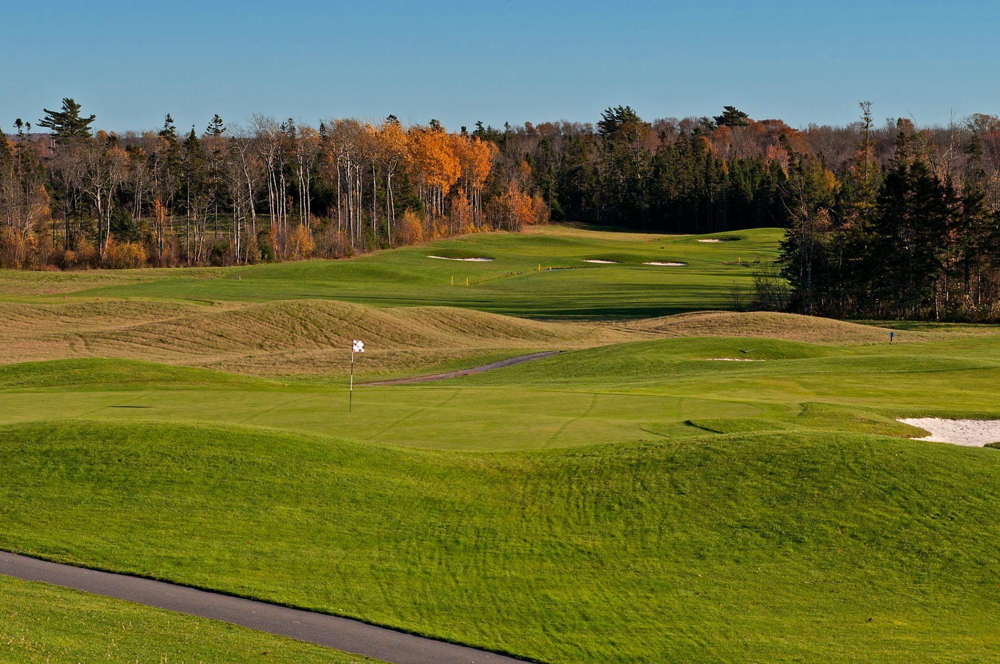 Avondale golf course cover picture