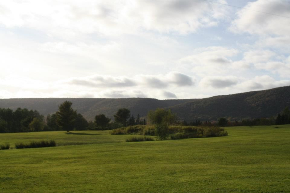 Baddeck forks golf club cover picture