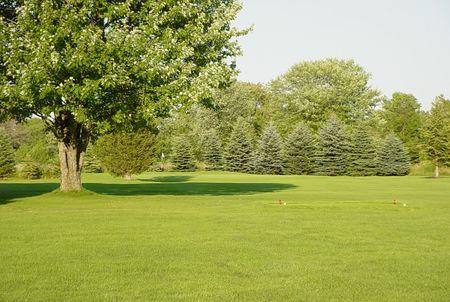 Barcovan Golf Club Cover