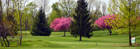 Overview of golf course named Burlington Springs Golf Club