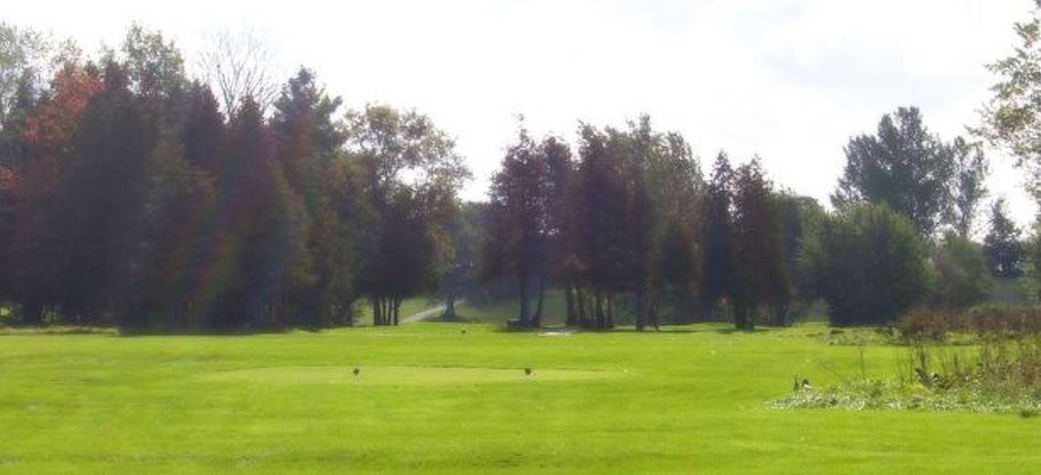 Bushwood golf club cover picture