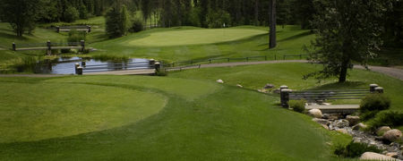 Cougar creek golf club cover picture