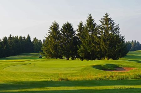 Dalewood golf club cover picture
