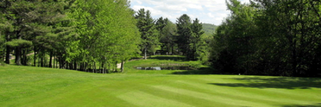Overview of golf course named Eden Golf and Country Club
