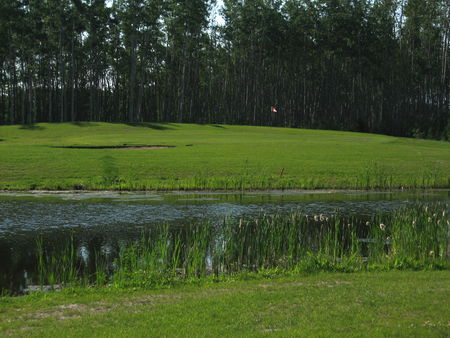 Fox Haven Golf and Country Club Cover Picture