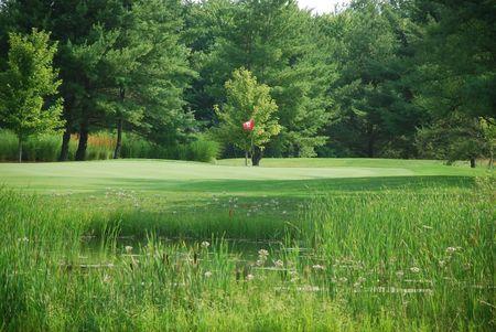 Golf Griffon Des Sources Cover Picture