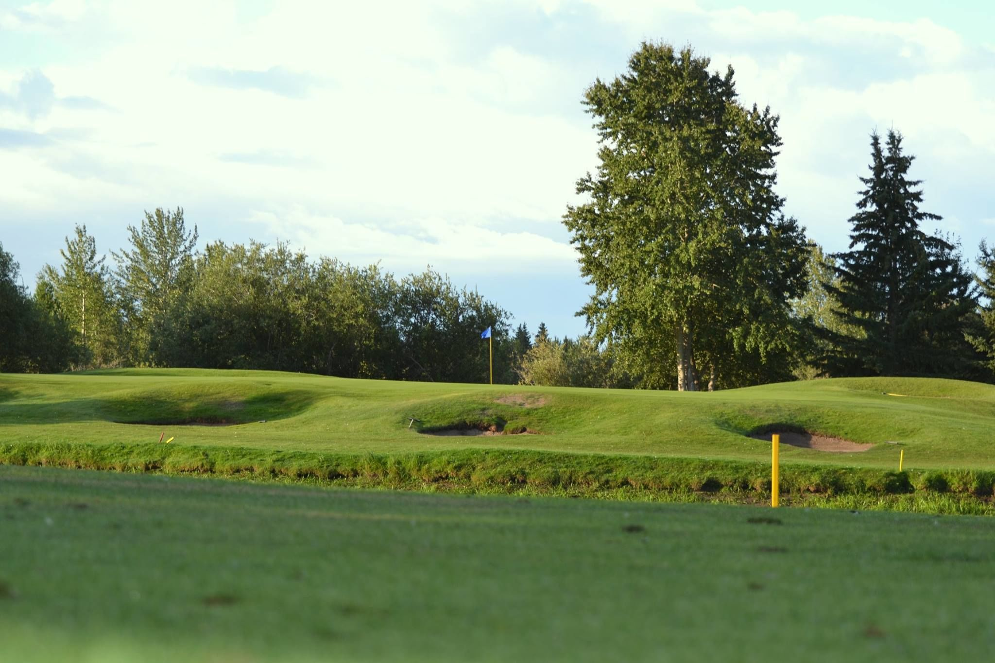 Goose hummock golf resort cover picture