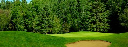 Grouse nest golf course cover picture