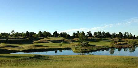 Heron Landing Golf Club Cover Picture