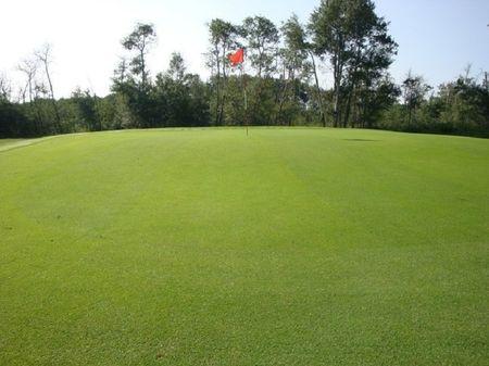 Hughenden Golf Club Cover