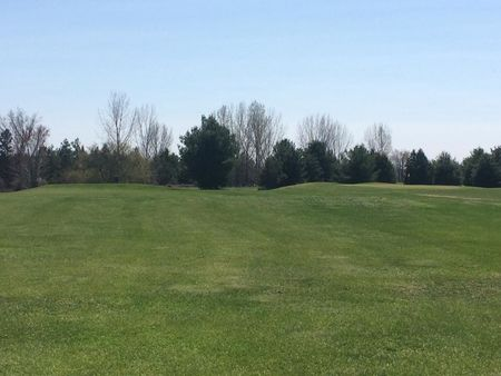 Madawaska golf course twisted pines cover picture
