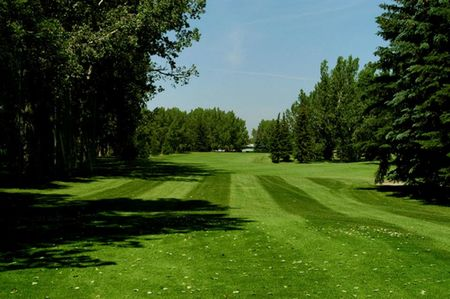 Maple ridge golf cover picture