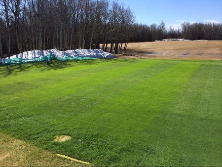 Morningview Park Golf Course Cover