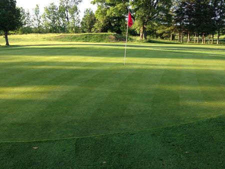 Mount Forest Golf and Country Club Cover Picture