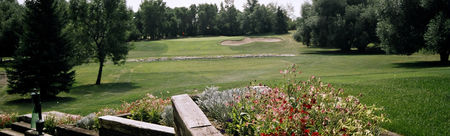 Murray Golf Course Cover Picture