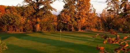 Pros Golf Club Cover