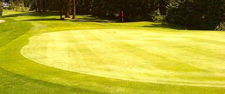 Royal oak golf club cover picture