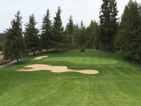 Salmon arm golf club cover picture